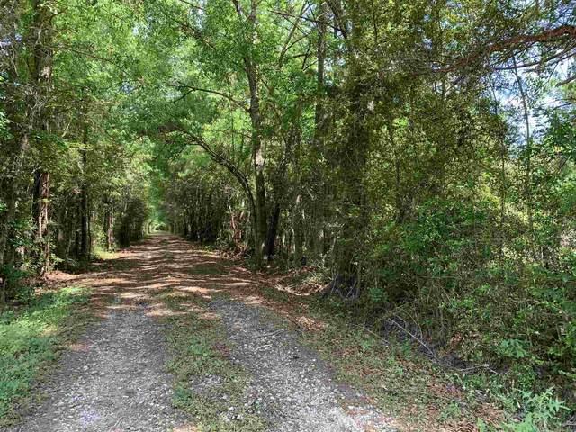 8137 Fm 1943E, Warren, TX 77664 (MLS #203197) :: Triangle Real Estate