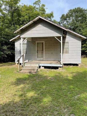 956 County Road 4595 Loop, Fred, TX 77616 (MLS #203221) :: Triangle Real Estate