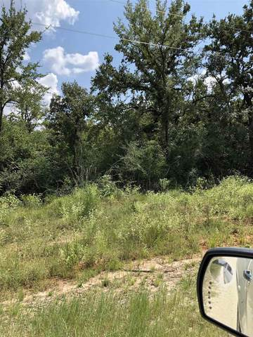 TBD Cr 3674, Marquez, TX 77865 (MLS #203489) :: Triangle Real Estate
