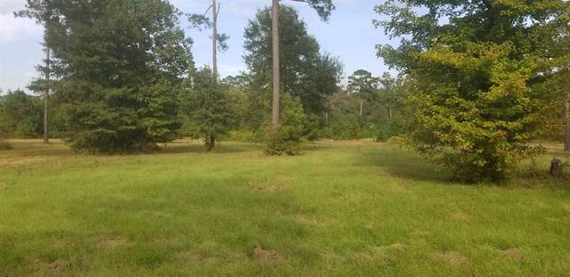 451 E Old Tejas Trail, Hemphill, TX 75948 (MLS #203749) :: Triangle Real Estate