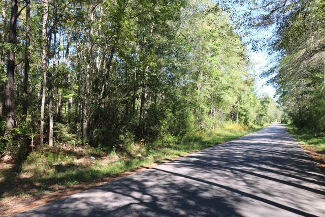 TBD Co. Rd. 3073, Kirbyville, TX 75956 (MLS #203754) :: Triangle Real Estate