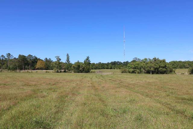 TBD (Tract 1) Co. Rd. 3063, Kirbyville, TX 75956 (MLS #203756) :: Triangle Real Estate