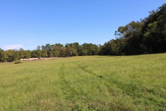 TBD (Tract 2) Co. Rd. 3063, Kirbyville, TX 75956 (MLS #203757) :: Triangle Real Estate
