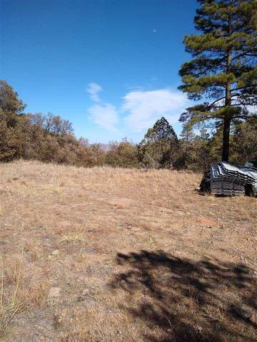 402-(Lot 7) 15.31 ac Colleen Canyon Trail, Fort Davis, TX 79734 (MLS #202296) :: Triangle Real Estate