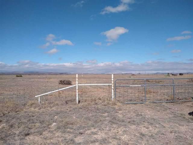 210 Sgt Mulhern Loop, Fort Davis, TX 79734 (MLS #202364) :: Triangle Real Estate