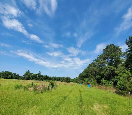 000 Pvt Rd 8001, Jasper, TX 75951 (MLS #202920) :: Triangle Real Estate