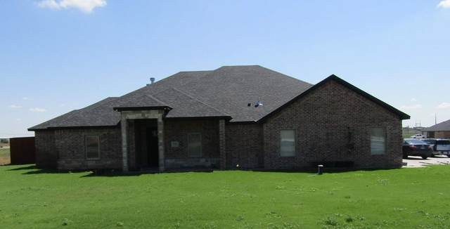 15271 Jack Cook Dr, Amarillo, TX 79119 (MLS #202881) :: Triangle Real Estate
