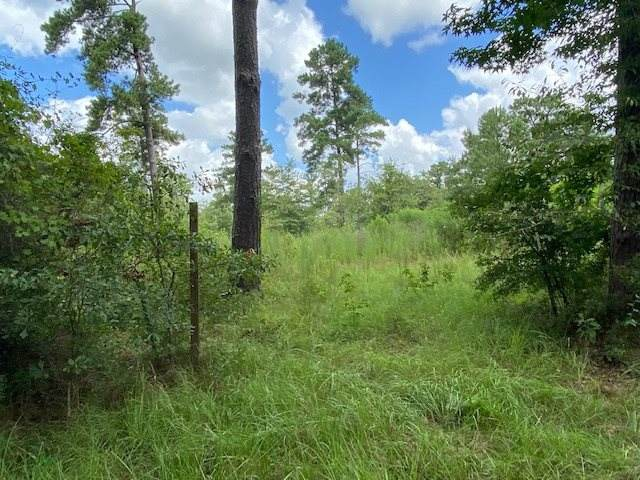 15889 County Road 482, Kirbyville, TX 75956 (MLS #202124) :: Triangle Real Estate