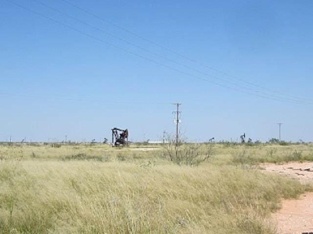 Gaines County Crp 165.3 Acres - Photo 1