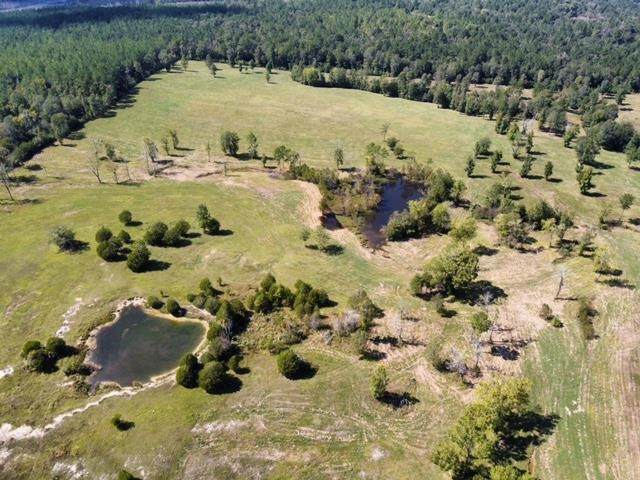 13105 Hwy 87 N, Burkeville, TX 75977 (MLS #203753) :: Triangle Real Estate