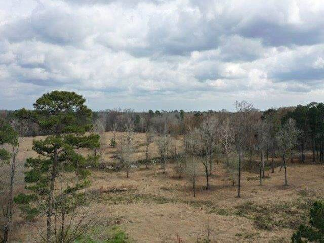 TBD S Fm 31, Carthage, TX 75633 (MLS #201983) :: Triangle Real Estate