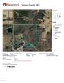 TBD 56.2 ACRES STATE ROAD O - Photo 3