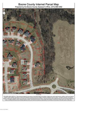 LOT 231A August Briggs Drive, Columbia, MO 65201 (MLS #10058047) :: Columbia Real Estate