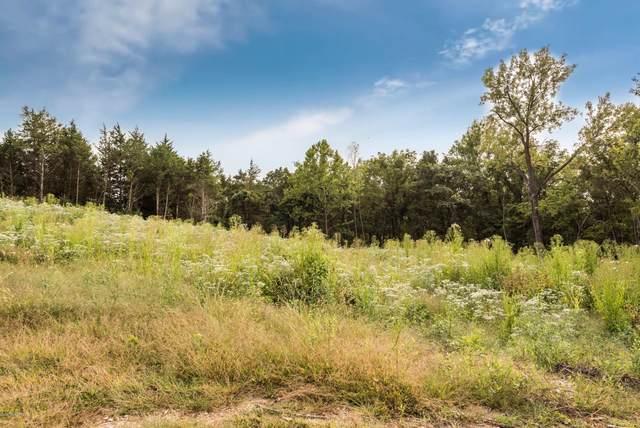 437 Virginia Trail, Jefferson City, MO 65109 (MLS #10059097) :: Columbia Real Estate