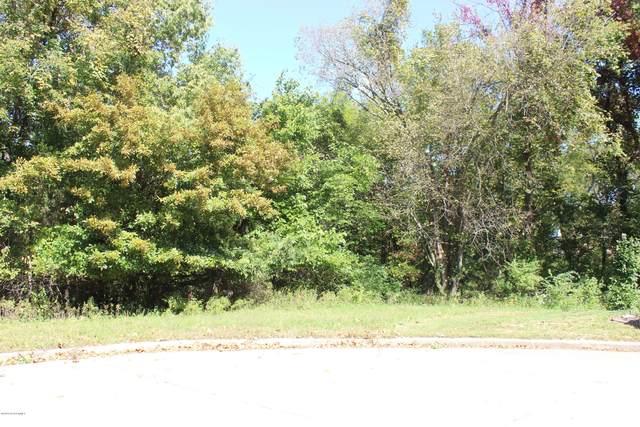 225 Joe Lane, Jefferson City, MO 65101 (MLS #10059199) :: Columbia Real Estate