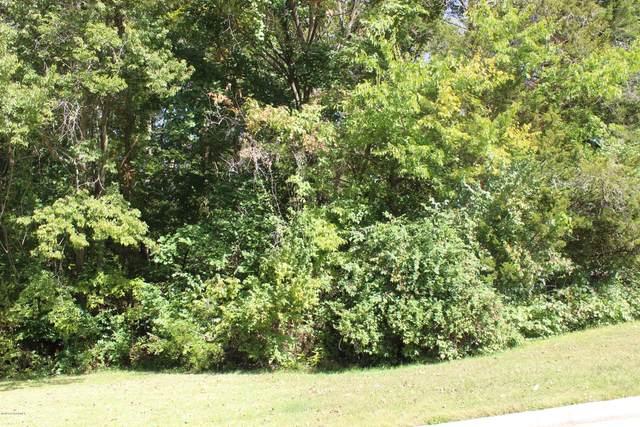 337 David Street, Jefferson City, MO 65101 (MLS #10059210) :: Columbia Real Estate