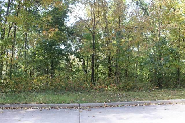 TBD David Street, Jefferson City, MO 65101 (MLS #10059211) :: Columbia Real Estate