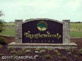 LOT 116 Tanglewood Way - Photo 1