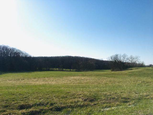 TRACT 5 County Road 325, Fulton, MO 65251 (MLS #10060265) :: Columbia Real Estate