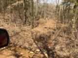 42.90 Acres Strawberry River Road - Photo 4