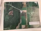143.8 acres Greene County - Photo 18