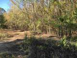 Tract 3 Casey Springs Road - Photo 10