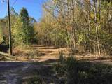 Tract 3 Casey Springs Road - Photo 11