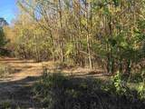 Tract 3 Casey Springs Road - Photo 9