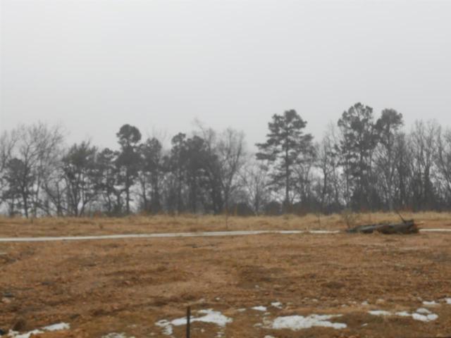 1385 Sullivan Circle, Jonesboro, AR 72401 (MLS #10059184) :: Halsey Thrasher Harpole Real Estate Group