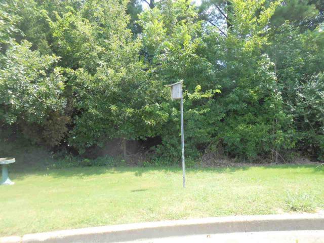 200 Capital Cv, Jonesboro, AR 72401 (MLS #10070556) :: REMAX Real Estate Centre