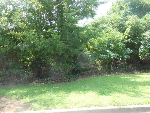 205 Capital Cv, Jonesboro, AR 72401 (MLS #10070557) :: REMAX Real Estate Centre