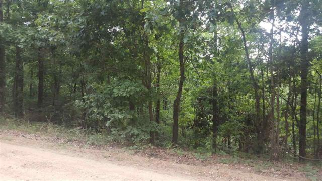 James Neal Rd, Harrisburg, AR 72432 (MLS #10070794) :: REMAX Real Estate Centre