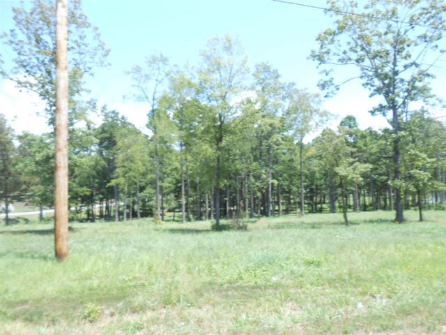 LOT 2 Cr 428, Jonesboro, AR 72404 (MLS #10071250) :: REMAX Real Estate Centre