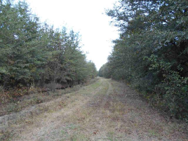 70 acres Rivervale, Rivervale, AR 72377 (MLS #10071962) :: REMAX Real Estate Centre