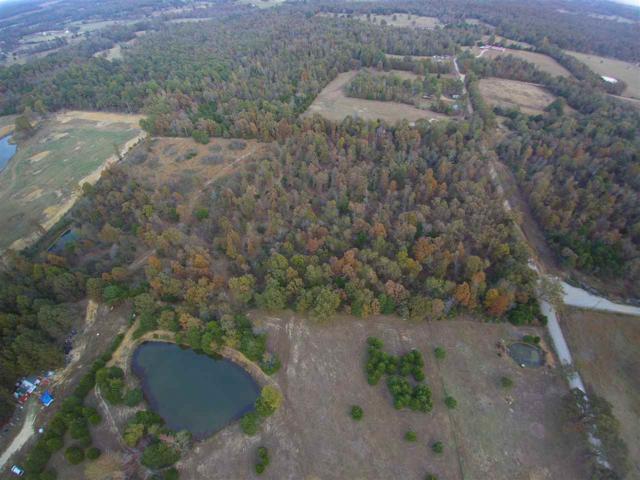00 Acres Tucker, Maynard, AR 72444 (MLS #10072073) :: REMAX Real Estate Centre
