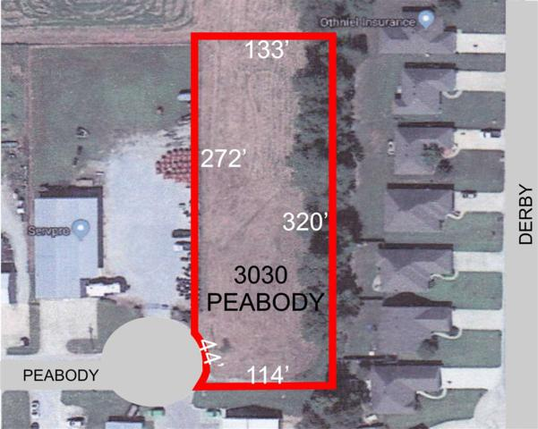 3030 Peabody, Jonesboro, AR 72404 (MLS #10073085) :: Halsey Thrasher Harpole Real Estate Group