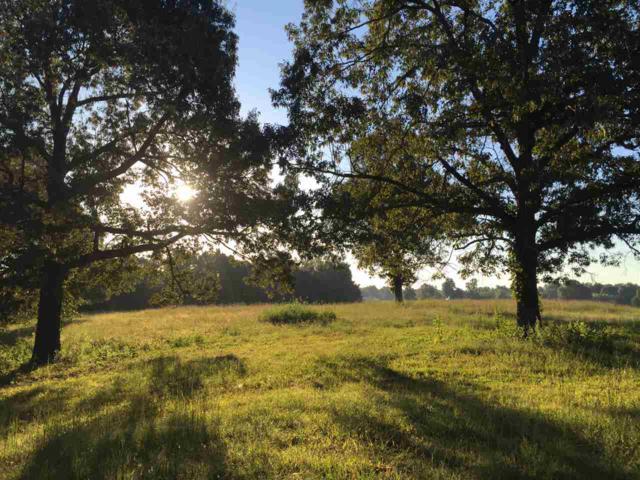 LOT 6 The Woodlands At Terra Hills, Jonesboro, AR 72401 (MLS #10073187) :: Halsey Thrasher Harpole Real Estate Group