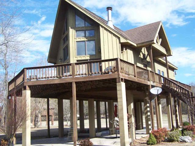 297 Loberg Drive, Hardy, AR 72542 (MLS #10073633) :: REMAX Real Estate Centre