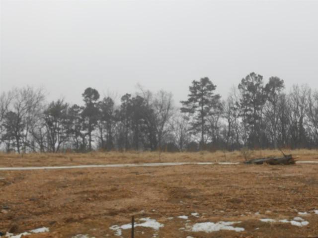 1497 Sullivan Circle, Jonesboro, AR 72401 (MLS #10074605) :: Halsey Thrasher Harpole Real Estate Group
