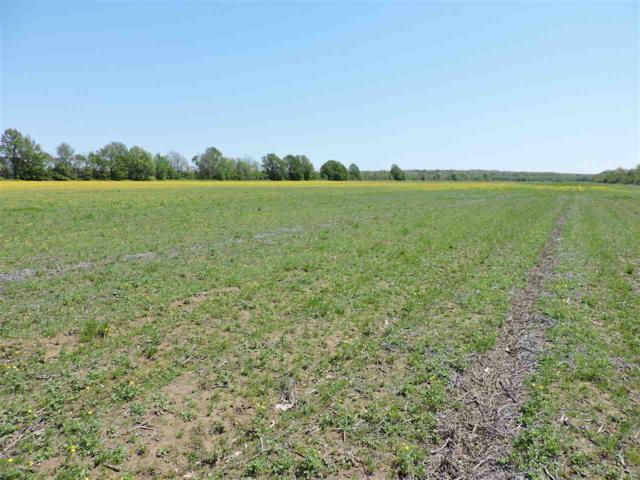 68 Acres Cr 328, Bono, AR 72416 (MLS #10074648) :: Halsey Thrasher Harpole Real Estate Group