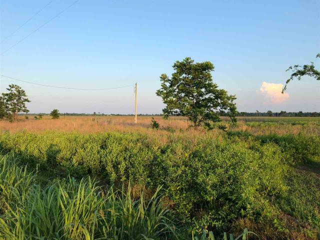 31954 South Rd, Marked Tree, AR 72365 (MLS #10075111) :: REMAX Real Estate Centre