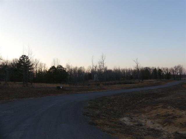 2 Diamond Valley Estates, Jonesboro, AR 72404 (MLS #10075231) :: Halsey Thrasher Harpole Real Estate Group