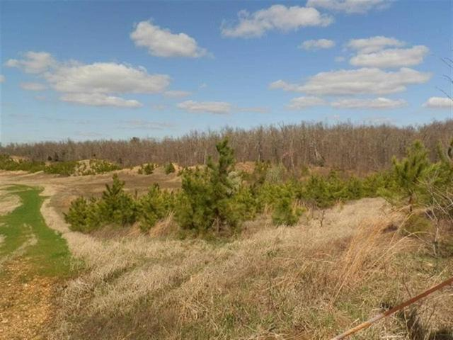+/- 60 ac Hwy 358, Paragould, AR 72450 (MLS #10075249) :: Halsey Thrasher Harpole Real Estate Group