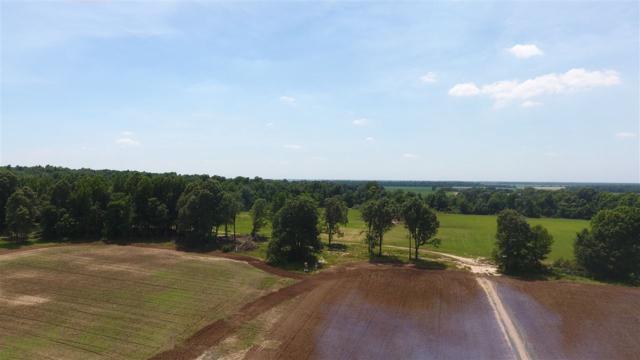 1059 Greene 324 Rd, Bono, AR 72416 (MLS #10075385) :: Halsey Thrasher Harpole Real Estate Group
