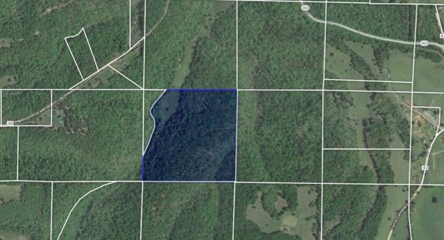 263 Hwy, Mountain View, AR 72560 (MLS #10075404) :: Halsey Thrasher Harpole Real Estate Group