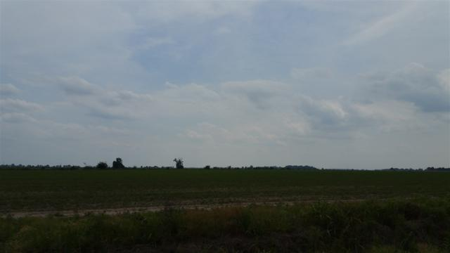 99.29 Acres, Bay, AR 72411 (MLS #10075609) :: Halsey Thrasher Harpole Real Estate Group