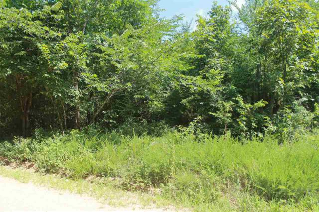 River Rd., Hardy, AR 72542 (MLS #10075707) :: REMAX Real Estate Centre