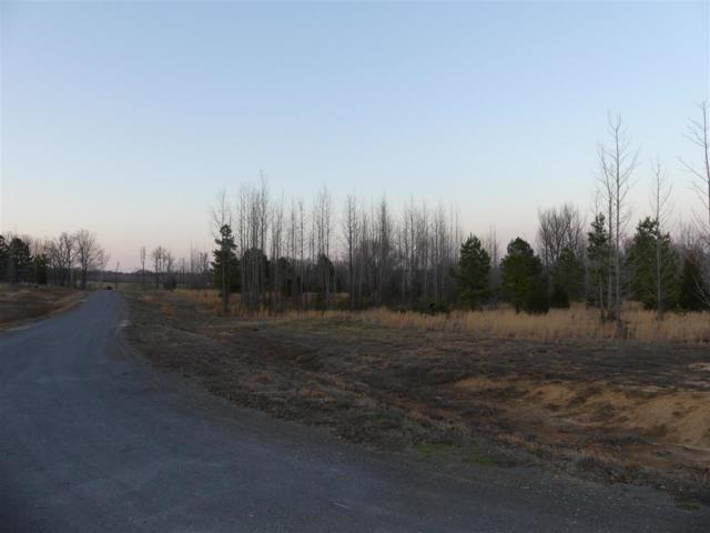 6 Diamond Valley Estates Phase II, Jonesboro, AR 72404 (MLS #10076138) :: Halsey Thrasher Harpole Real Estate Group