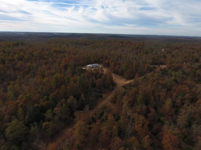 300 Duncan, Calamine, AR 72418 (MLS #10076487) :: Halsey Thrasher Harpole Real Estate Group