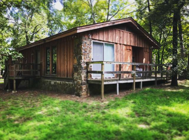 180 Salt Cave Drive, Greers Ferry, AR 72067 (MLS #10076686) :: Halsey Thrasher Harpole Real Estate Group